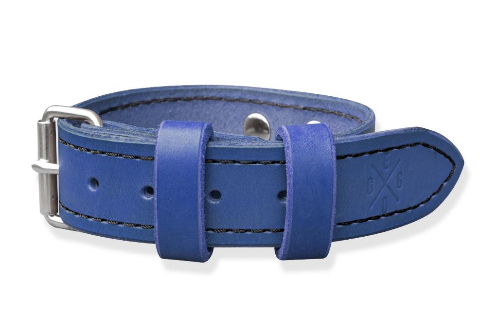 Obojek pro psa - modrý